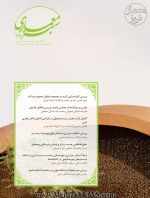 دریافت مقالات نشریه معماری سبز، شماره ۱۶، تابستان، شهریور ۱۳۹۸