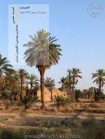 دریافت گاهنامه کمیته علمی معماری بومی ایکوموس ایران، شماره ۶، زمستان ۹۹